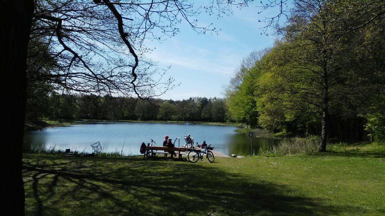kleiner Waldsee, noch eine Idylle, bald komplett überfüllt Lake Tree Sky Water Nature Beauty In Nature Nature Landscape