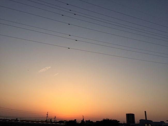 夕焼け Sunset 空 Sky 電線 Electric Wires