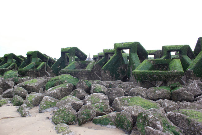 Green Color Green Colour On The Beach Rock Formation Travel Destinations Tourism Shore Outdoors Day Physical Geography Vacations Sea Non-urban Scene Tranquility Nature Moss Tranquil Scene Beauty In Nature Sea Defence Coastal Defences Coastal Defence Work Seaweed Geometric Architecture Geometric Shape Geometric Shapes