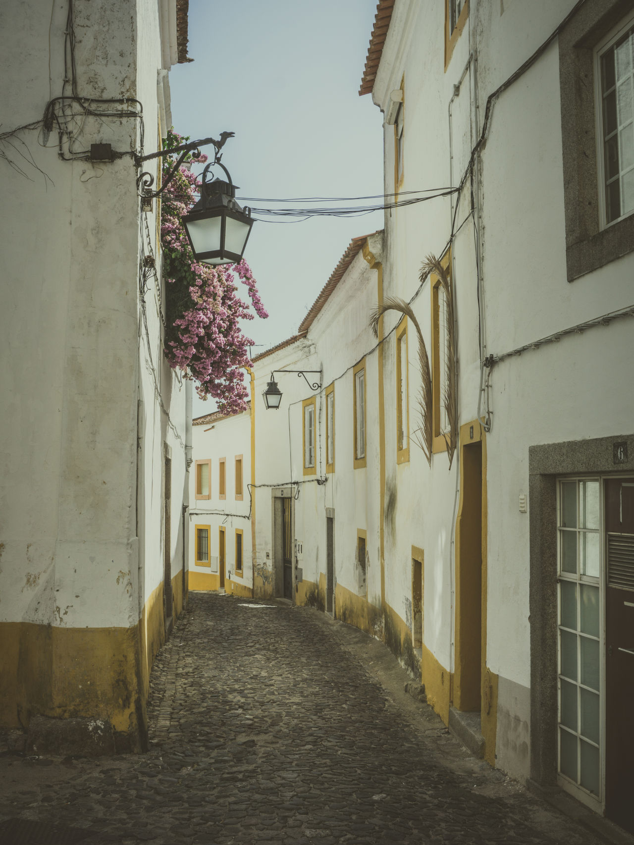Alley Building Exterior City Narrow Nasmgraphia No People Portugal Portugaldenorteasul Portugaligers Residential District Residential Structure The Way Forward Vanishing Point Walkway Évora