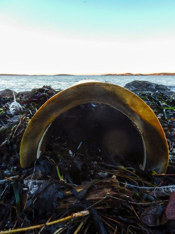 Beach Beachphotography Blue Sky Dumping Rubbish Feathers Ocean On The Beach Rough Sea Seaside Sky