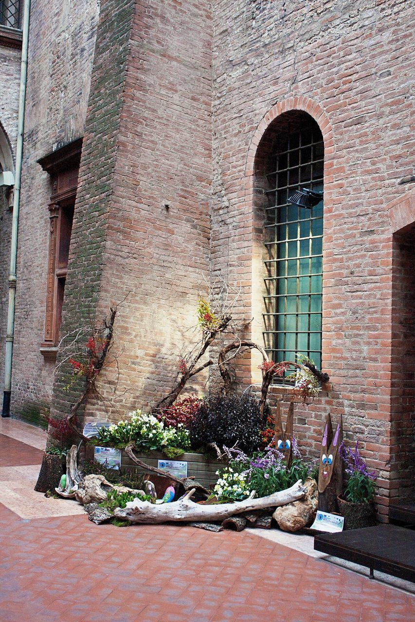 brick wall, brick, architecture, building exterior, built structure, plant, no people, day, outdoors, window, nature, window box
