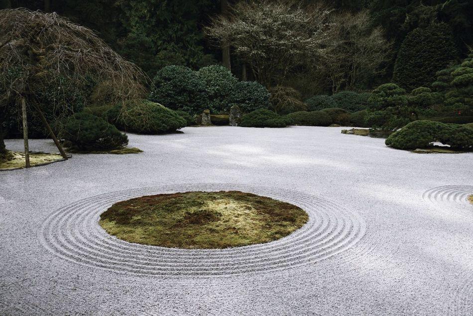 Circles Portland