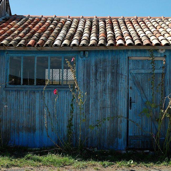 Cabane ostréicole Cabanesostreicoles Saintrojanlesbains Oleron Charantemaritime bleu bois