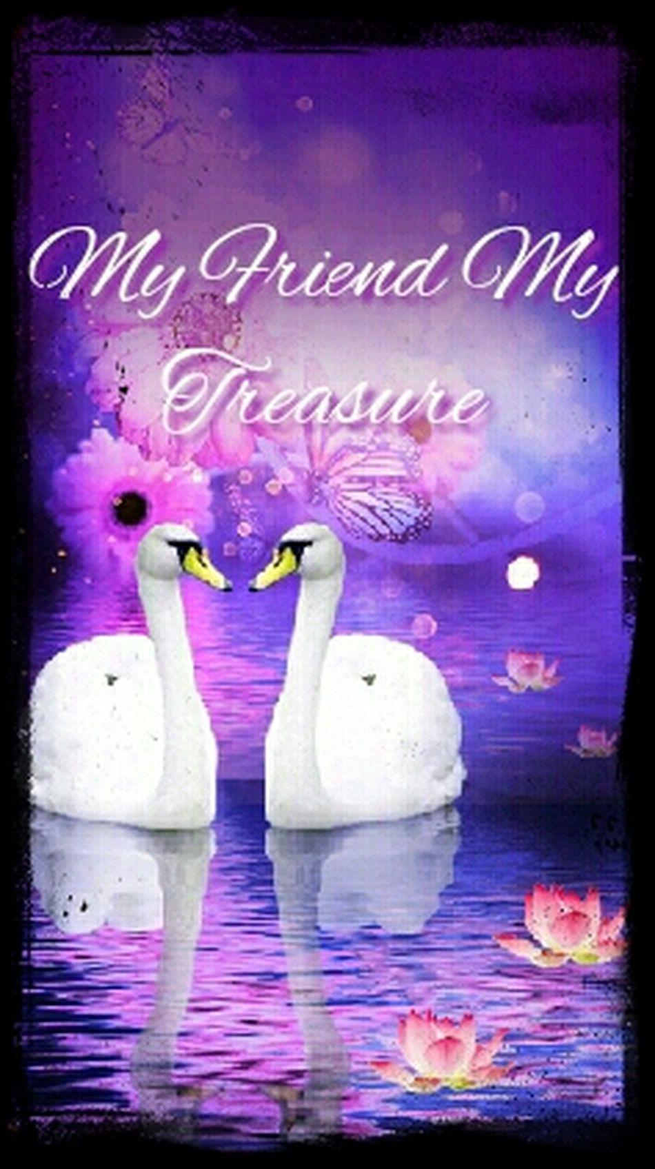 9588467friends are treasures 337861 619 337861