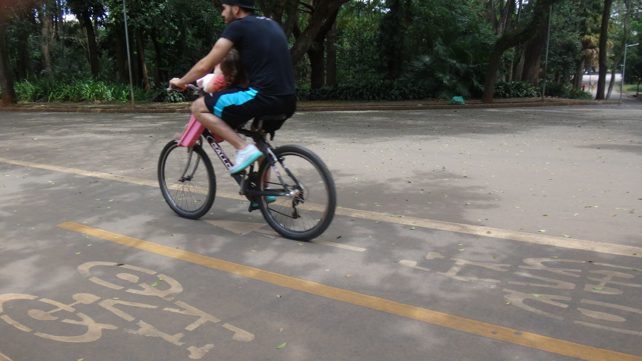 bicycle, transportation, cycling, real people, riding, mode of transport, land vehicle, outdoors, one person, day, road, full length, men, tree, nature, city, people