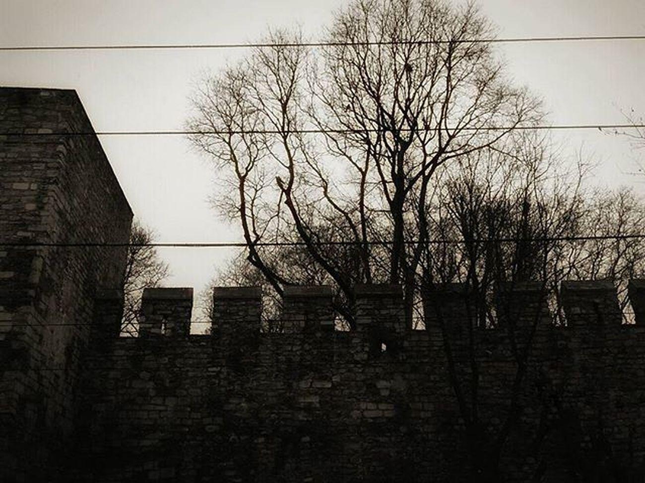 Vscoism Vscoturkiye Vscoturkey Vscoistanbul Benimkadrajım Objektifimden Objektifimdenyansiyanlar Dark Castle Agac Kale