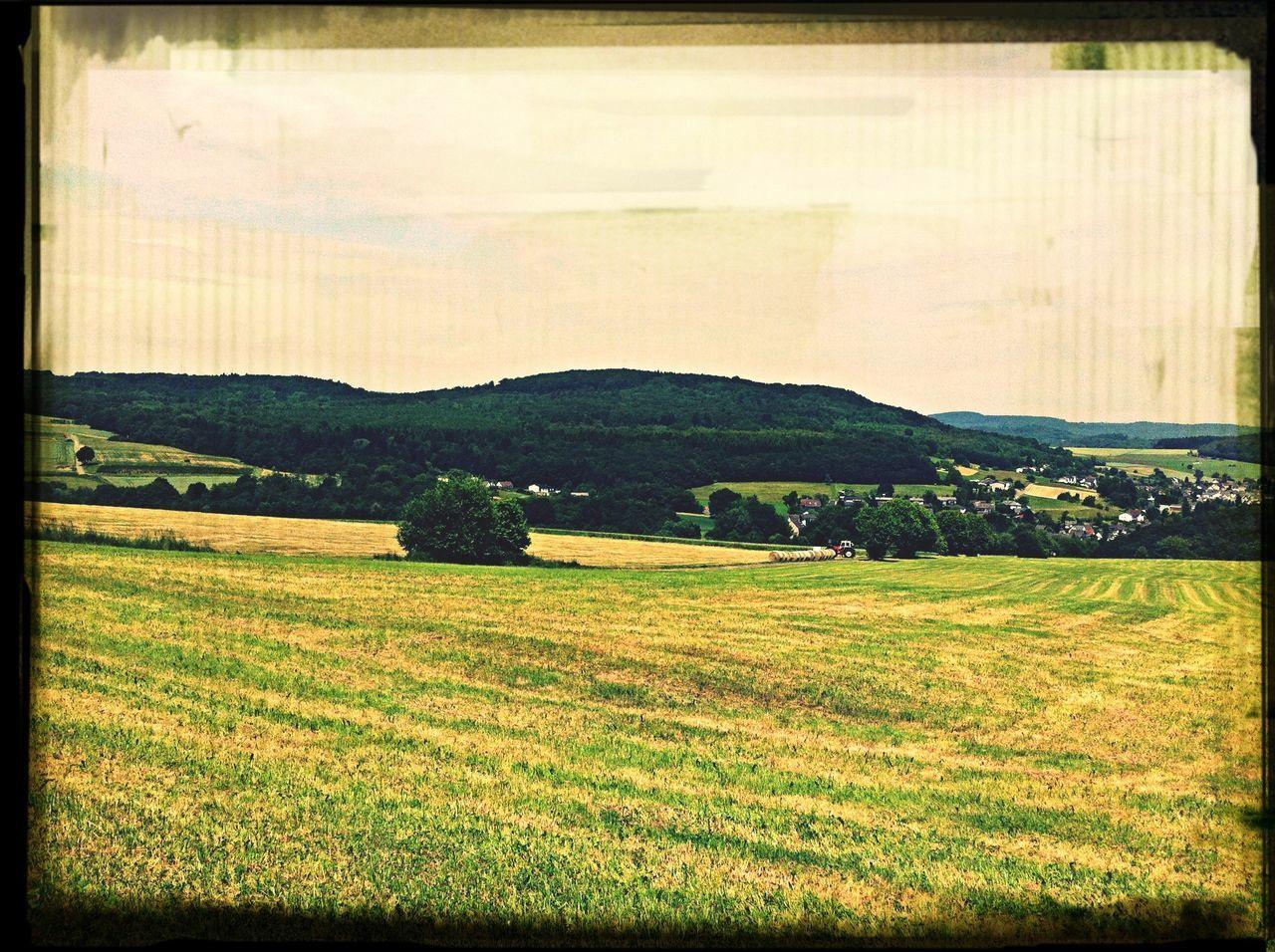 Nature EyeEm Best Shots Taking Photos Germany