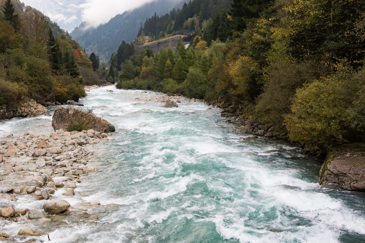 Idyllic river in rural area of Switzerland. Autumn Beauty In Nature Motion Nature No People Outdoors Riverscape Scenics Tree Water