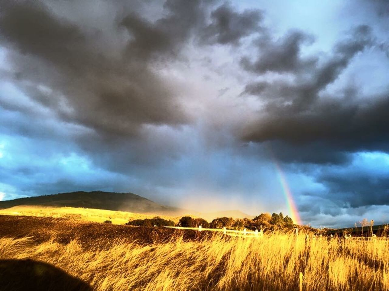 dramatic sky, cloud - sky, beauty in nature, nature, landscape, scenics, storm, atmospheric mood, storm cloud, rainbow, power in nature, weather, tranquility, no people, outdoors, tornado, tranquil scene, sky, field, rural scene, day, grass, thunderstorm, tree, lightning