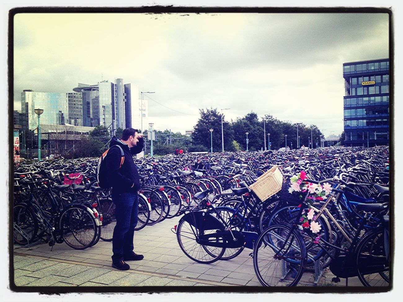 Searching My Bicycle