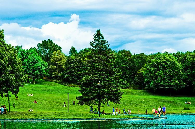 Beavers lake Tree Green Color Cloud - Sky Nature Beauty In Nature Sky Outdoors People Day Adult Fresh On Eyeem  On Eyeem Eyeem Photography Mont Royal Nature EyeEm Nature Lover EyeEm Best Shots - Nature EyeEm Best Shots - Landscape Nature Photography Beauty In Nature Mtroyalmoment MTLblog Mtlmoments Green Background Greenary