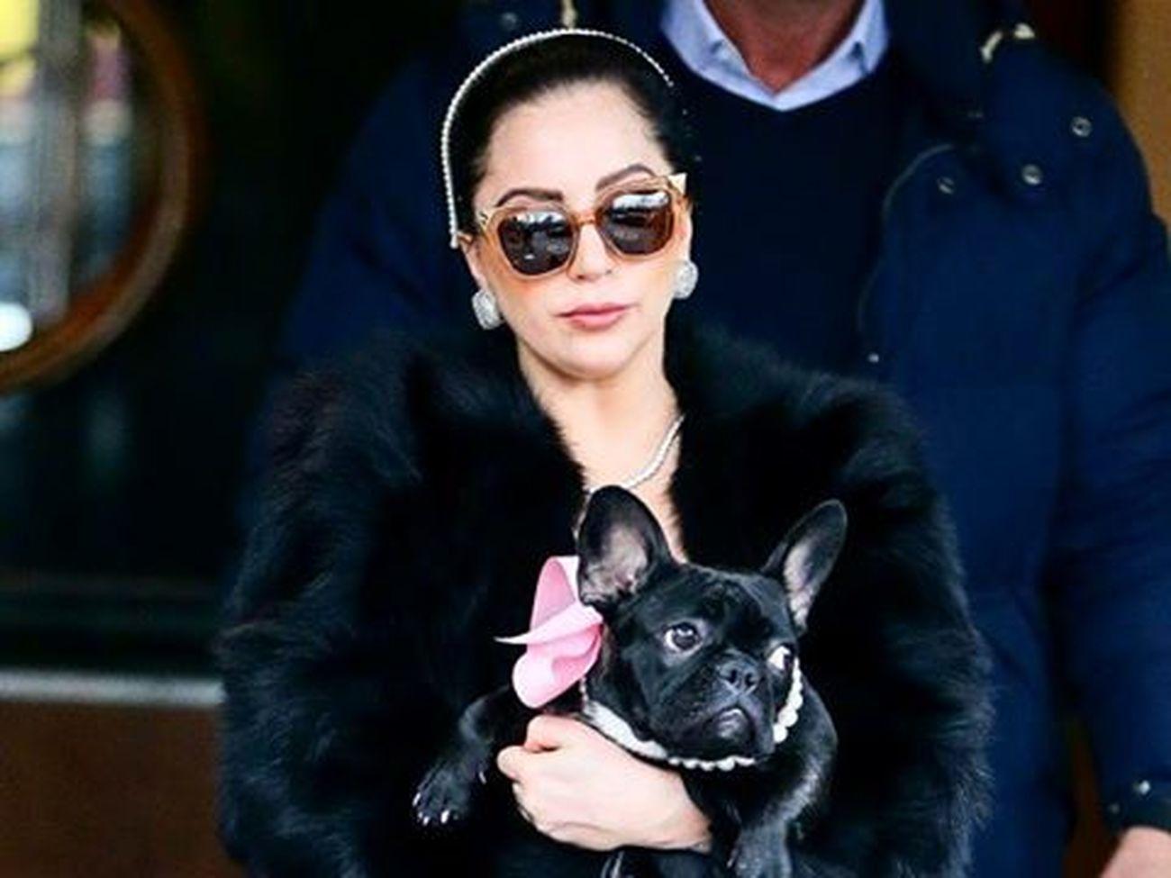 I love Lady Gaga she is my QUEEN @ladygaga @ladygaga_03 @gagzz_monster Gaga Gagzz_monster LG5 Ladygaga Ladygaga_03