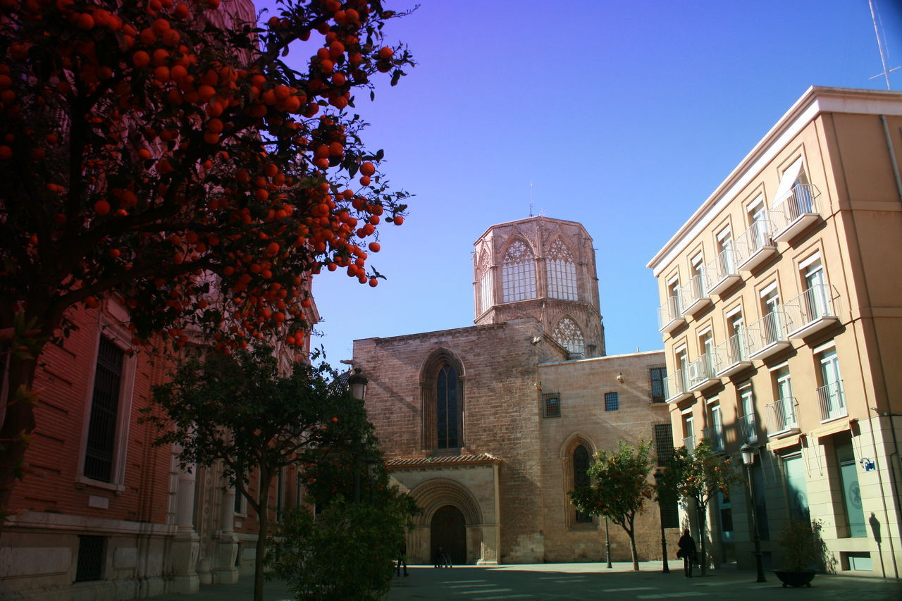 Valencia is celebrating Fallas. The weather reminds me of Paradise. Architecture Blue Sky Building Exterior Built Structure Orange Tree Oranges On Tree Place Of Worship Religion Tree Valencia, Spain