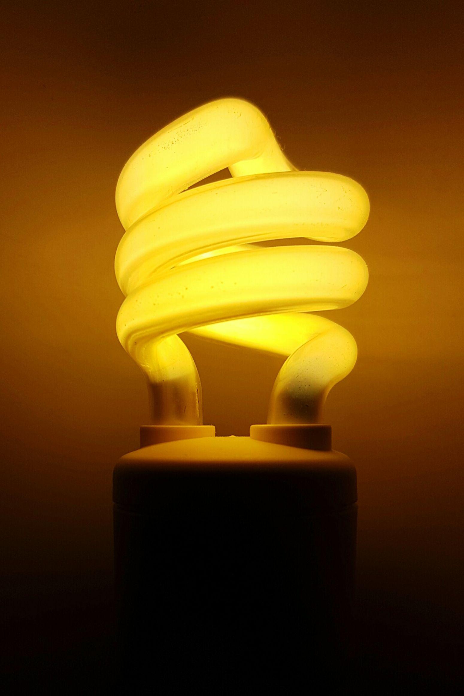 Lighting Equipment Light In The Darkness Light Bulb Close-up New Idea Light Questioning Mystical Atmosphere Genius Geniusidea