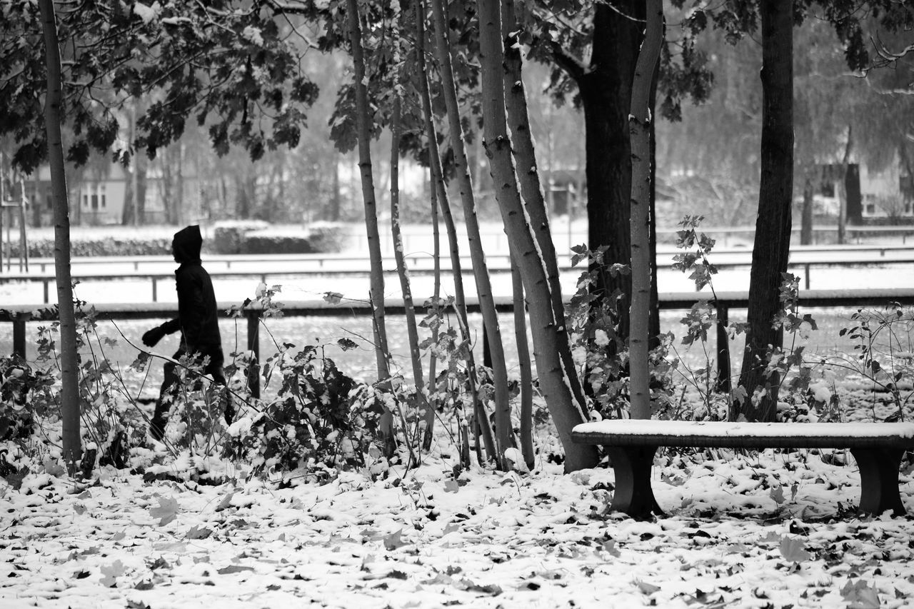 Walk In The Snow One Person Nature Lifestyles Outdoors Leisure Activity Winter Cold Temperature People Day Beauty In Nature Tree Full Length Check This Out Black And White Blackandwhite Outdoor Photography Black & White Wintertime Motif  Taking Photos From My Point Of View Moments Streetphotography Eyeemphotography
