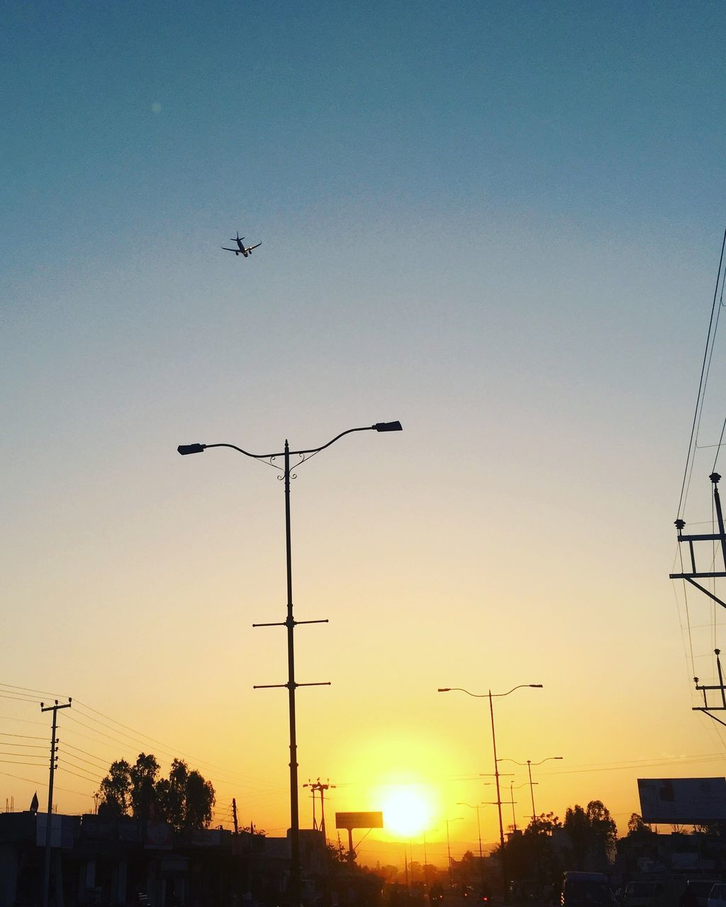 sunset, flying, silhouette, low angle view, street light, bird, no people, animal themes, outdoors, animals in the wild, sky, clear sky, nature, transportation, beauty in nature, technology, spread wings, day