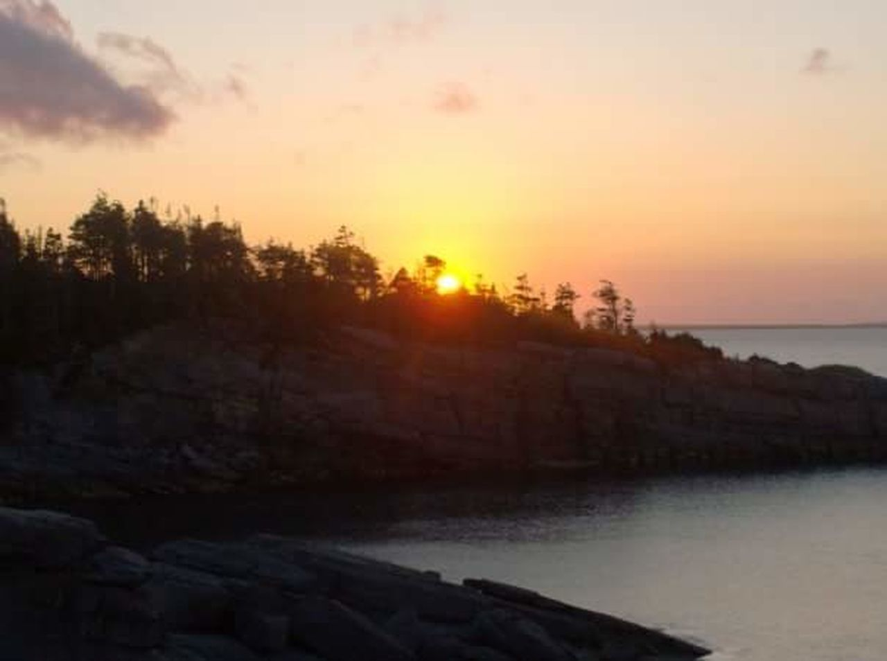 NFLD Sunset Sea Travel Nature Water Outdoors Travel Destinations Sky Landscape Beach Tree Scenics Cloud - Sky No People Beauty In Nature