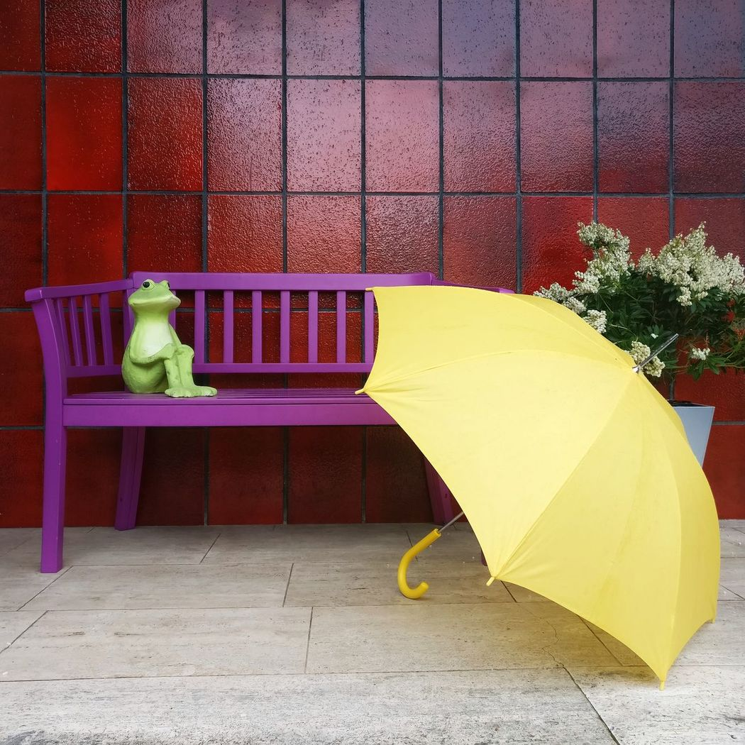Waiting for the rain to stop Yellow Multi Colored Outdoors No People Urban Photography Animal Themes Art Is Everywhere Umbrella Rain Shelter Color Scenics Green Frog Frog Raining Day Rainy Days Yellow Umbrella Waiting Waiting For The Rain To Stop Pink Bench Red Wall Sitting Alone Sitting Sommergefühle