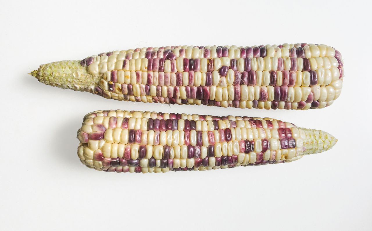 Cleanfood Cooking Cooking Time Corn Cornwall Eating Eating Good Food Food And Drink Healthy Isolated Nutral Nutrition Raw Rw Food Seed Waxy Corn Waxy Corn Waxy Maize