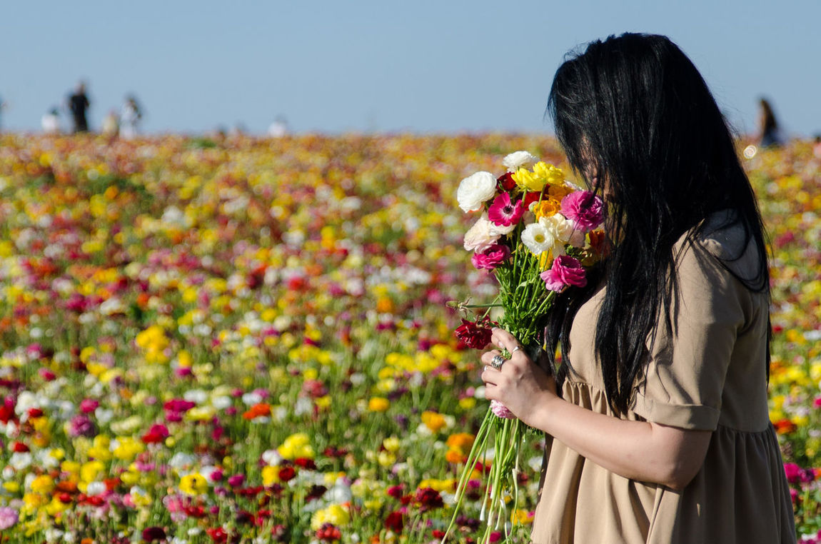 Beauty In Nature Blooming Casual Clothing Day Field Flower Fragility Grass Growth Leisure Activity Let Your Hair Down Lifestyles Nature Outdoors Plant EyeEm Best Shots EyeEm Nature Lover Eye4photography  EyeEm Best Shots - Nature EyeEm Smelling The Flowers Smelling Flowers On The Way
