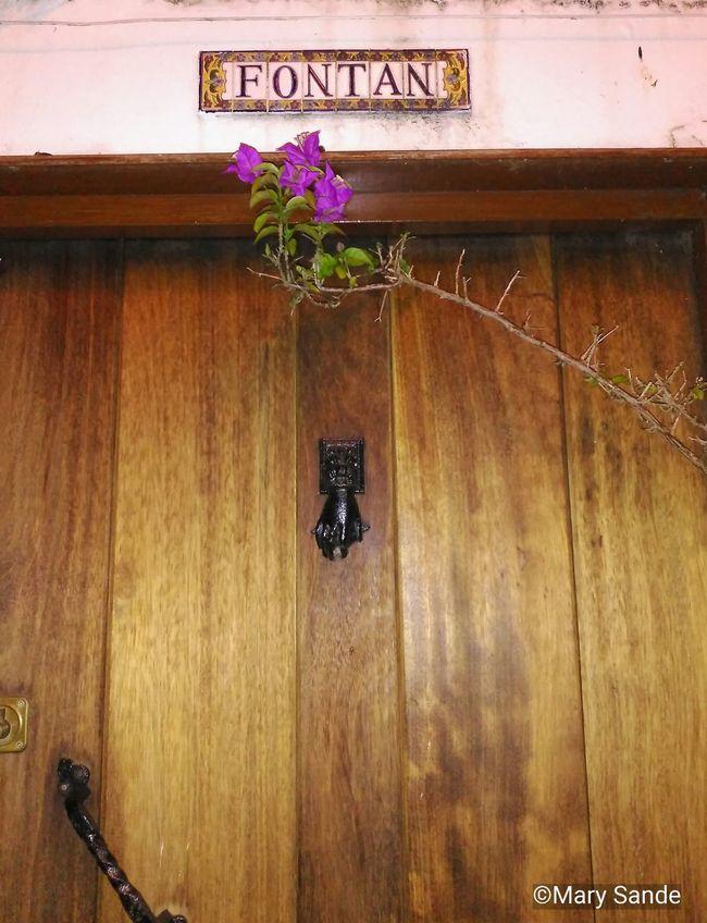 Flower Antique Door Spain♥ Galiciameiga Galicia Calidade EyeEm Gallery Eyeemphotography Antique Miñaterragalega Door 43 Golden Moments