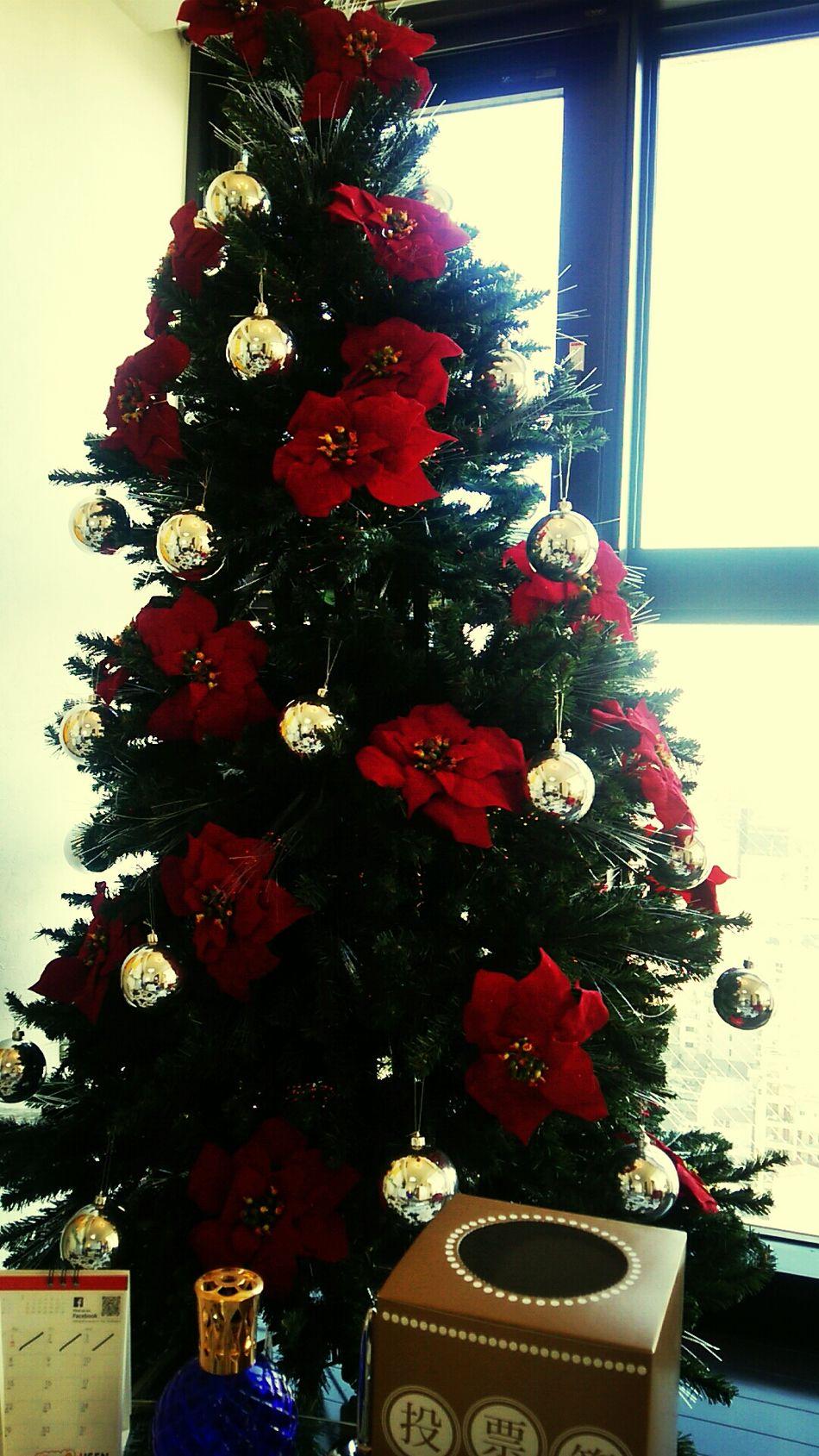 Christmas Tree 明日から寒い 雪降るかな 電車遅れるかな