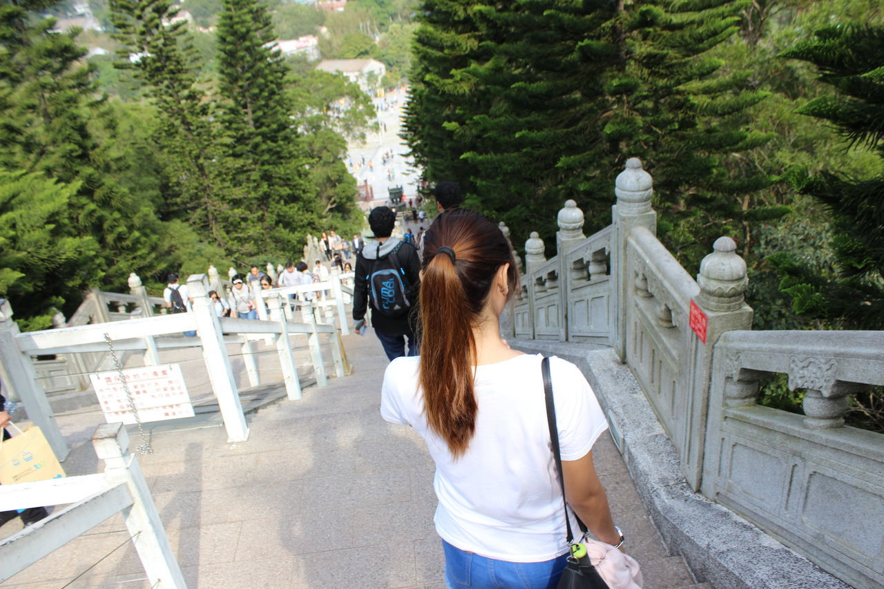 Rear View Tree One Person Leisure Activity Real People Outdoors Day Women Standing Adults Only People Adult Tian Tan Buddha (Giant Buddha) 天壇大佛 HongKong Staircase Travel Photography Travel Destinations