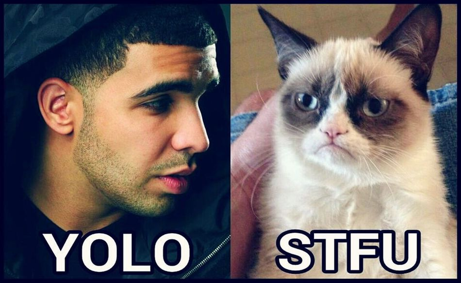 Funny LMAO LOL Haha Fun Funny Quote Funny Quotes Drake  Cat Cats