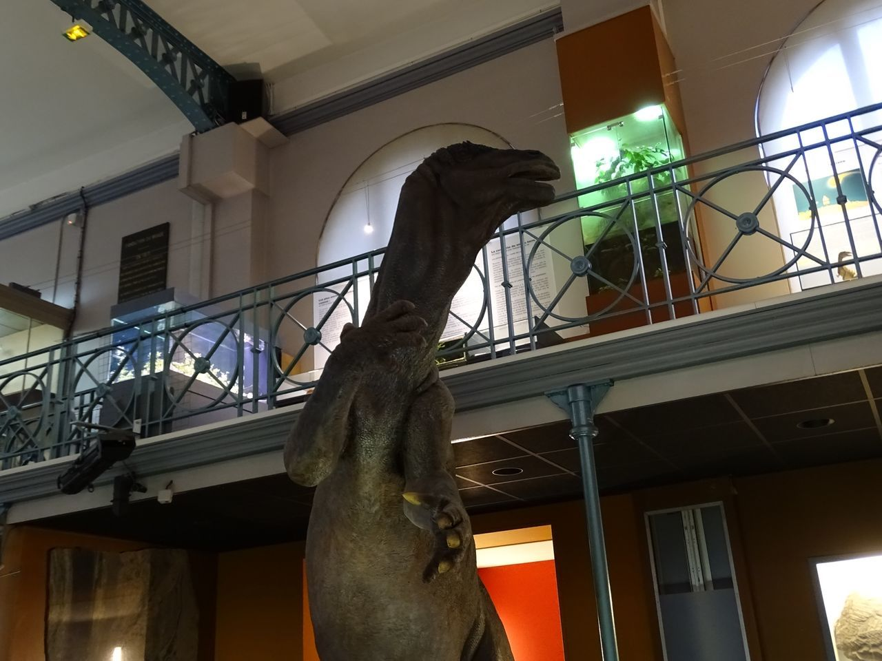 Architecture Balcony Built Structure Dead Animal Dinosaur Low Angle View Museum No People