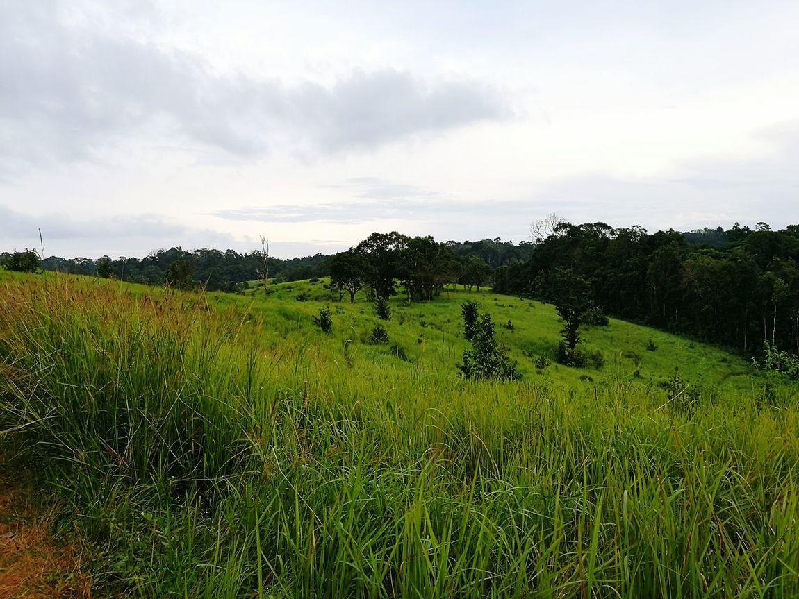 Stunning beauty of UNESCO award national park. Landscape Beauty In Nature First Eyeem Photo