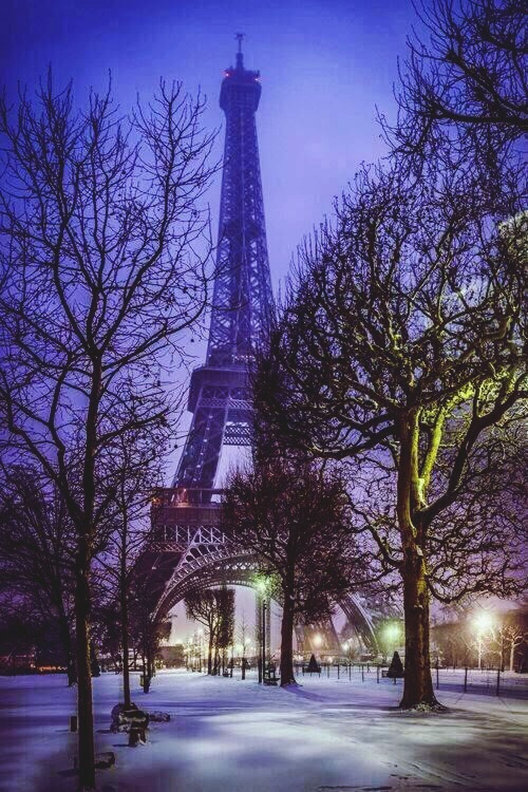 tree, built structure, architecture, bare tree, building exterior, illuminated, sky, tower, tall - high, travel destinations, street light, branch, dusk, low angle view, clear sky, city, road, the way forward, famous place, outdoors