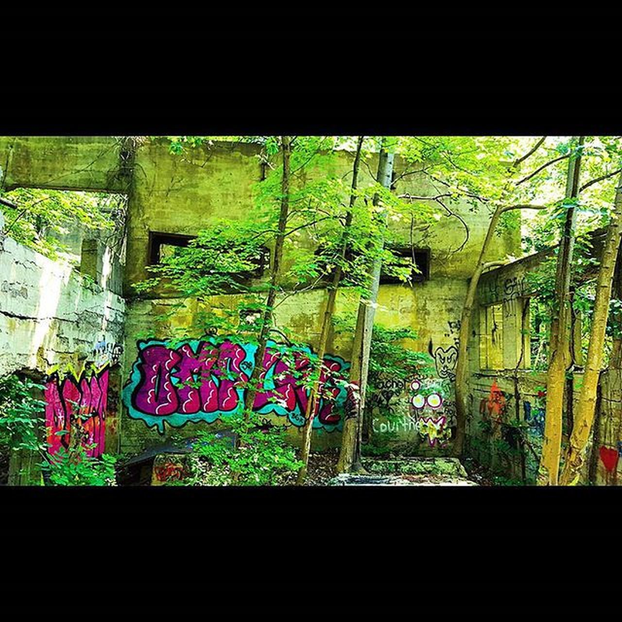 Take me back to this place. Kelleymediaproductions Art Abandoned Abandonedbuilding Graffiti Trees Nature Naturephotography Hiking Hikingphotography Photography Photographersofinstagram Color Colorphotography Stayrad