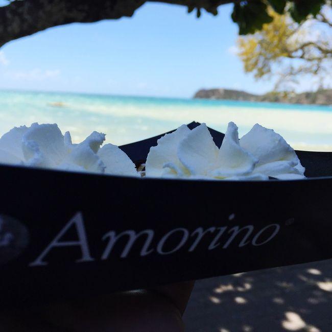 Amorino New Caledonia Holidays Beach 🍦☀️👌🏼