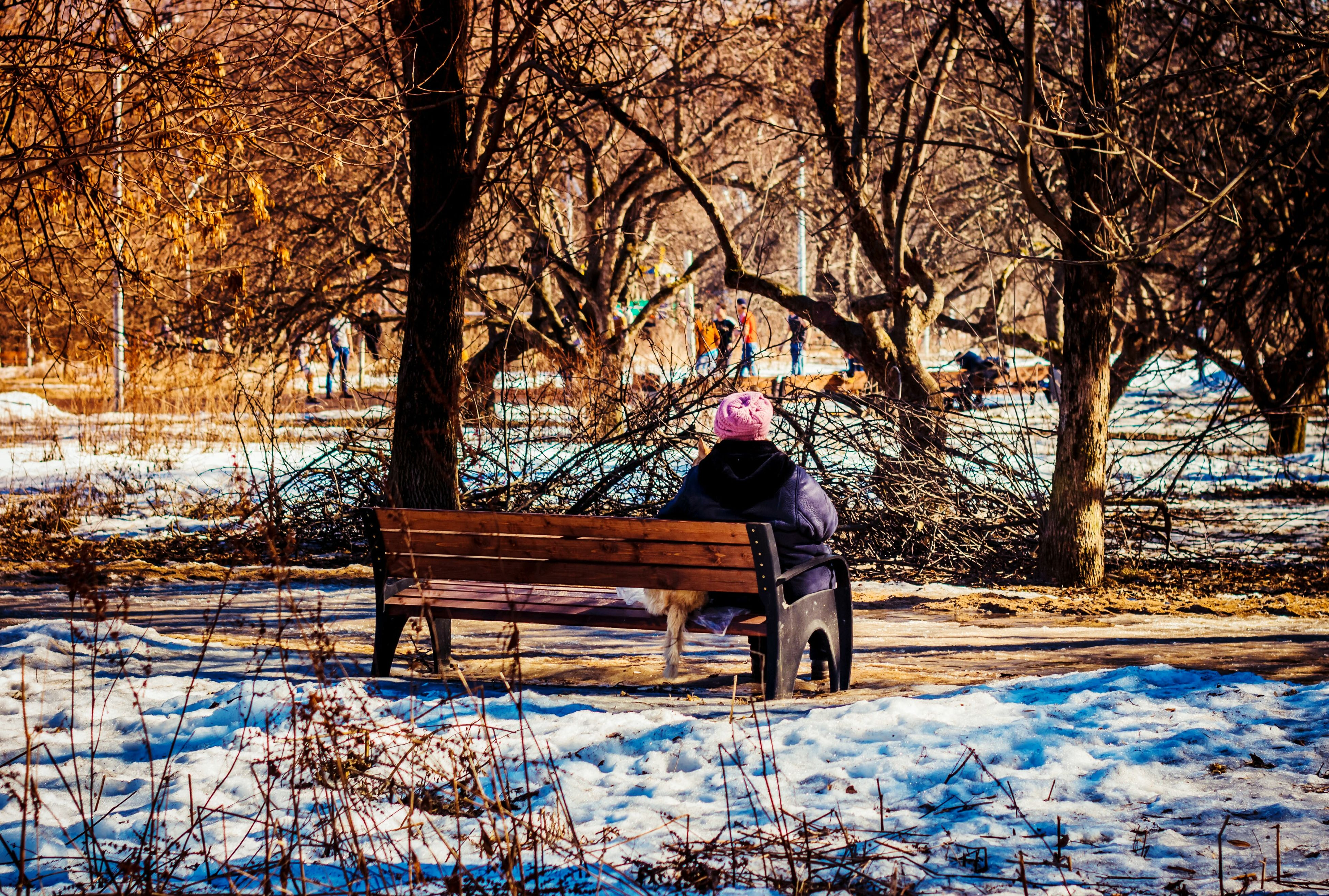 snow, winter, cold temperature, season, weather, bare tree, tree, covering, frozen, field, covered, warm clothing, nature, landscape, white color, full length, lifestyles, snowing