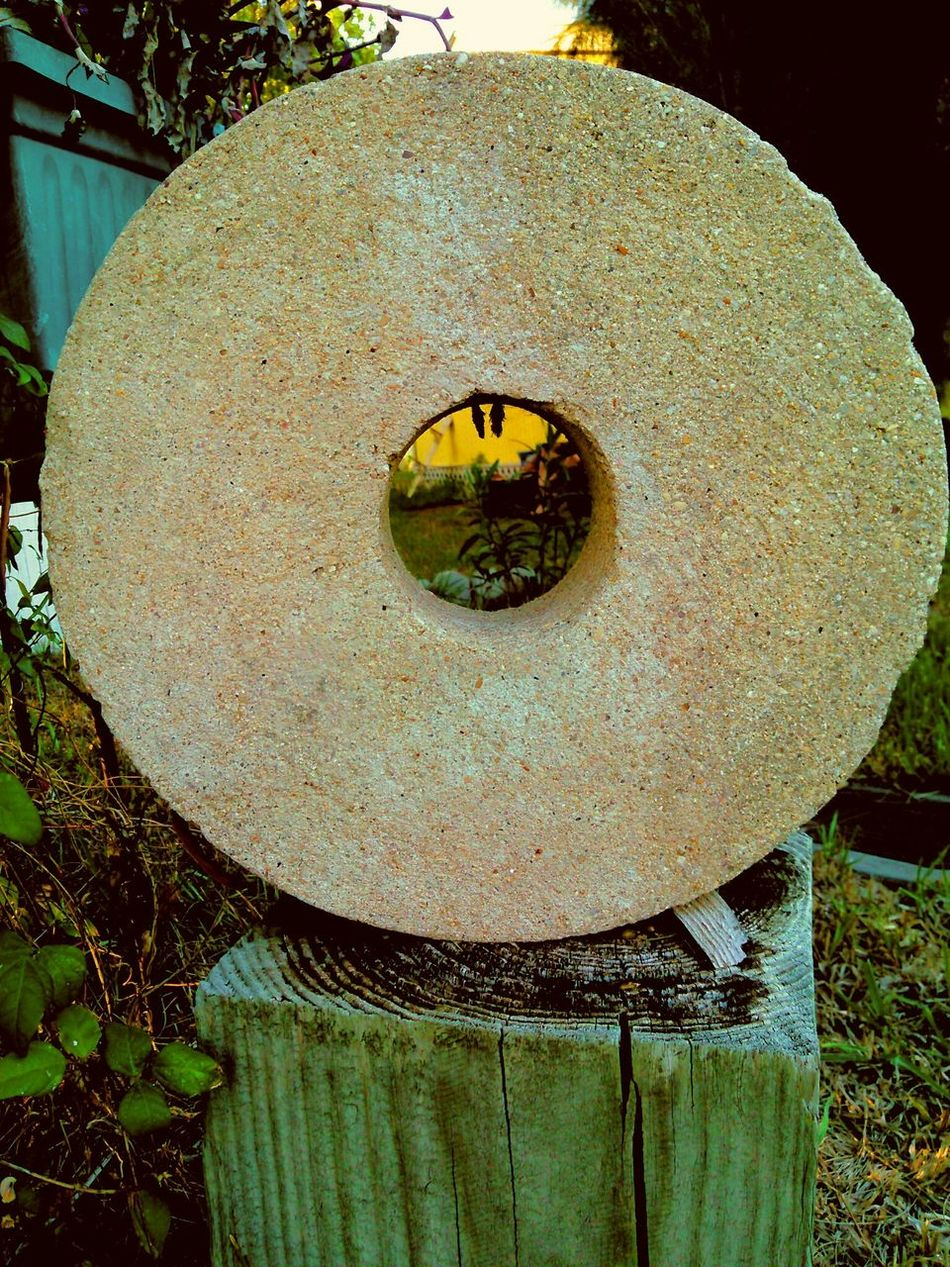This is so cool and about 60 lbs later! So who lost Fred Flintstones wheel! Yabba Dabba Doo