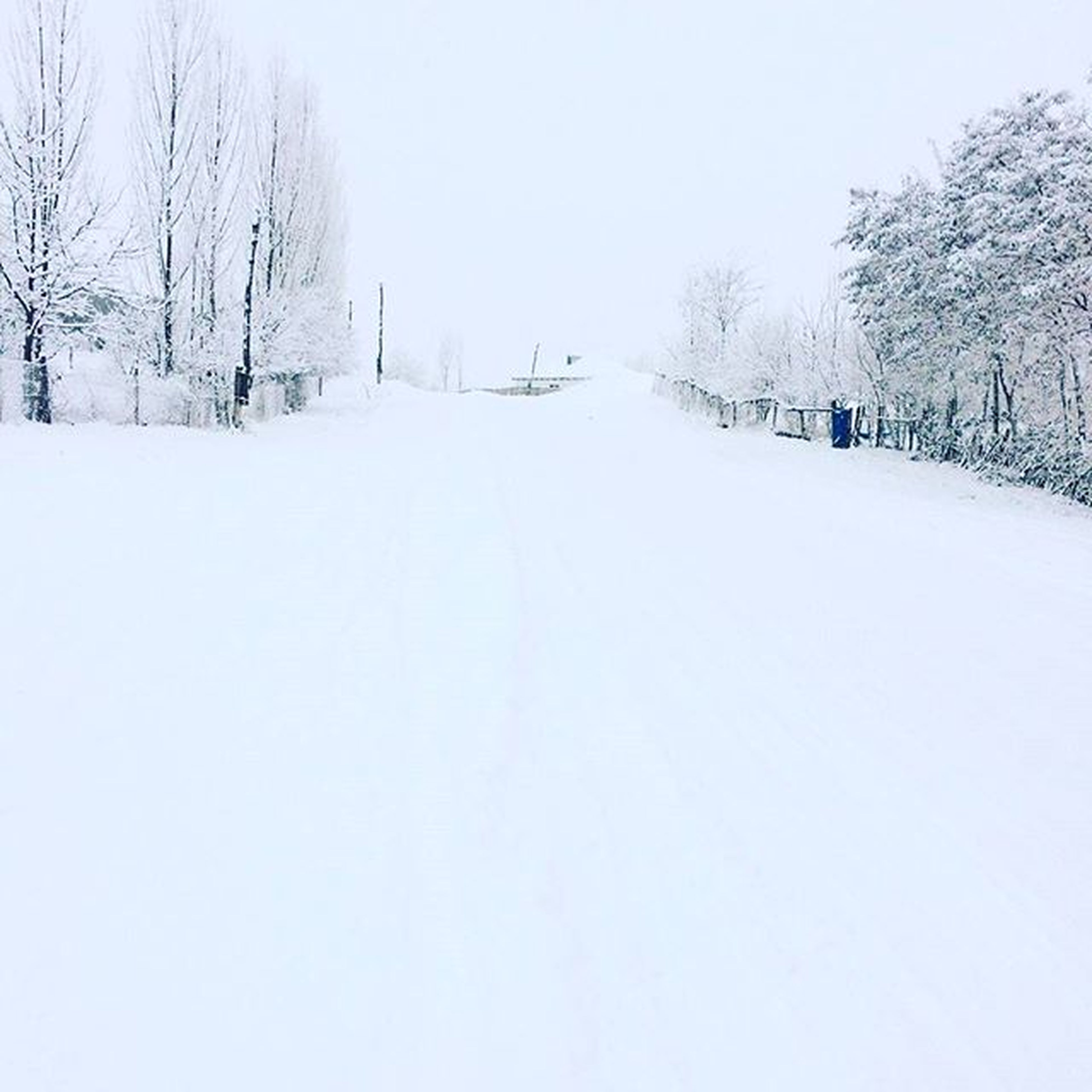 зима Дорога дорогузамело снегомпокрыт снег зимняяпора красивыипеизаж природапрекрасна