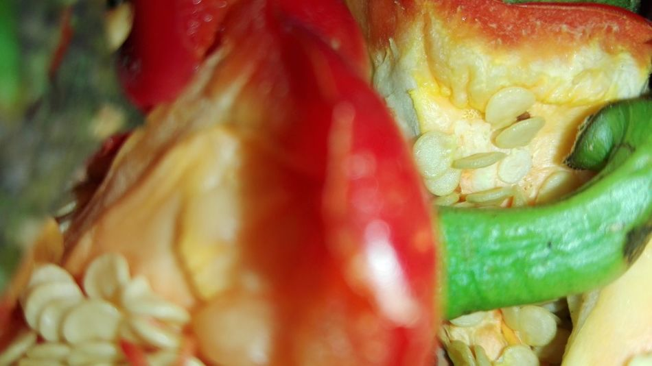 Food Freshness Healthy Eating Vegetable Close-up Red No People Multi Colored Bell Pepper Seeds WOLFZUACHiV Photography Huaweiphotography Eyeem Market WOLFZUACHiV Photos Wolfzuachiv Veronica Ionita Ionita Veronica On Market Huawei Photography No Person Red Bellpepper Seeds Red Bell Pepper Seeds Red Bellpeppers Seeds Leftovers WOLFZUACHiV Food