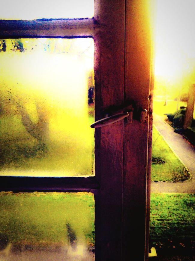 Window View From The Window... Eye4photography  EyeEm Morning Light Sunshine EyeEm Gallery Picoftheday Lovethewayyousmile