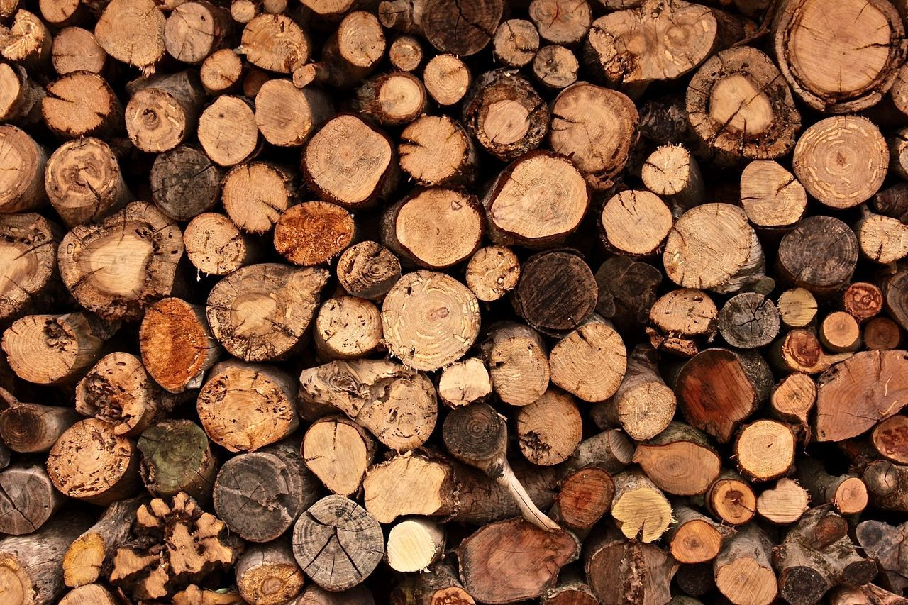 timber, log, stack, backgrounds, woodpile, abundance, lumber industry, full frame, large group of objects, heap, deforestation, wood - material, forestry industry, no people, close-up, day, outdoors