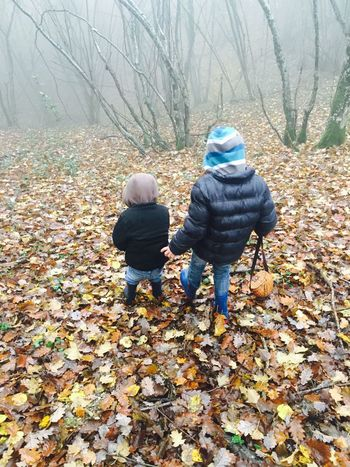 Little boys in the wood Full Length Real People Rear View Leaf Autumn Change Lifestyles Two People Nature Childhood Leisure Activity Bare Tree Togetherness Beauty In Nature Day Outdoors Forest Warm Clothing Cold Temperature Tree Eyem Gallery EyeEm Gallery Eyeemphotography First Eyeem Photo Brothers