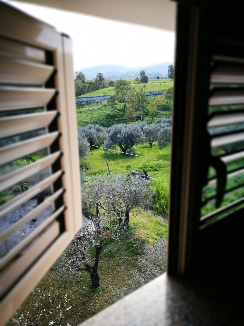 Nature Nature Photography Natura Sole Sun Bellagiornata Immaginiinquietanti Panoramic Photography Panorama Verde Calabria Badolato Calabriadascoprire Calabriadaamare Calabriamia