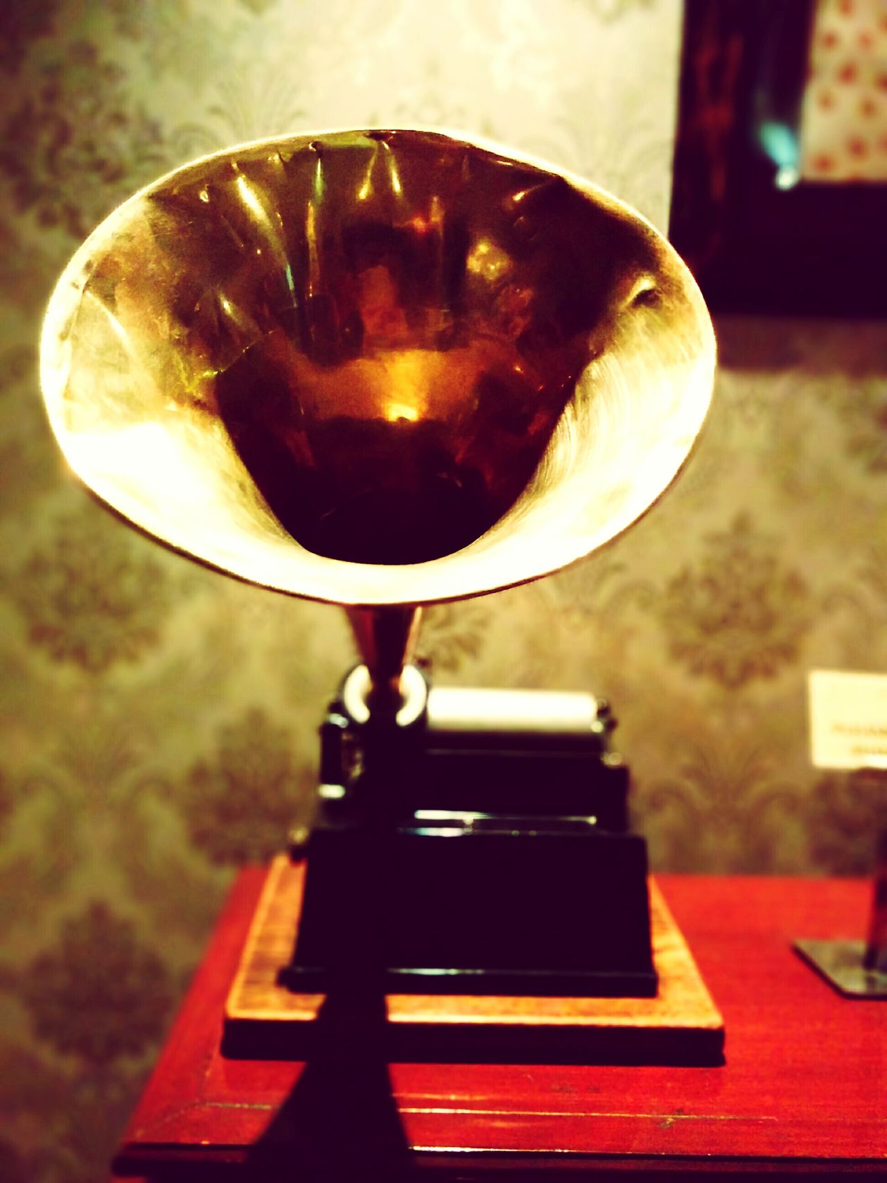 Music Gramophone Arts Culture And Entertainment Musical Instrument Performance Vintage Photo EyeEmNewInHere Flying High EyeEmNewHere High Angle View Close-up