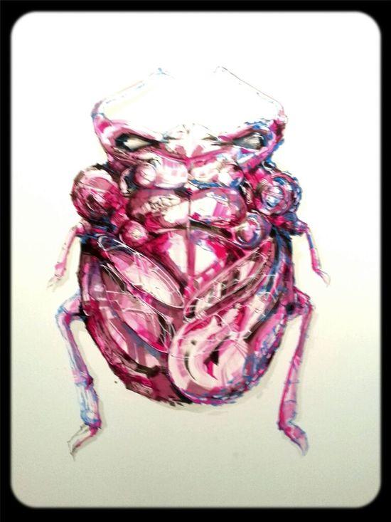 Art Exhibition Entomology Dem189 Plea