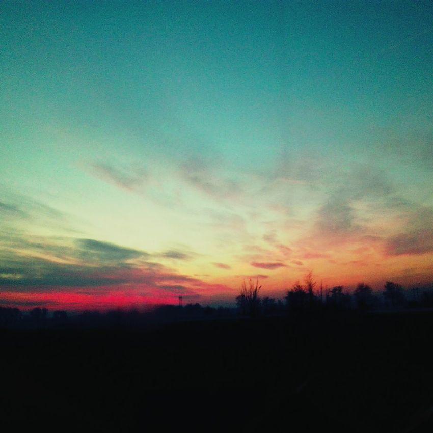 Sky Sunset Beauty In Nature Tree Landscape Lomellina