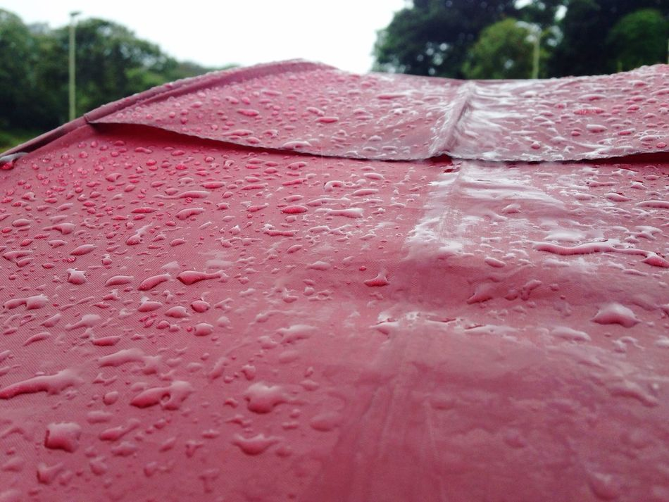 Waterdrops Redumbrella Umbrella Close-up Outdoors Purity IPhone Photography From Where I Stand 2016 Iphonephotography Wet Drop Red Selective Focus Simple