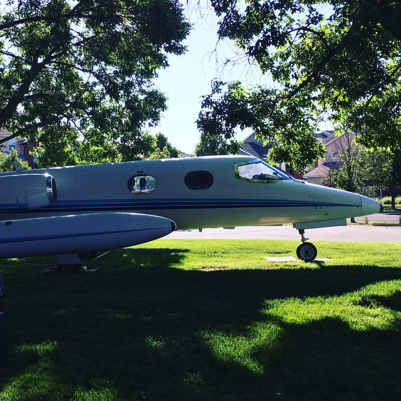 tree, grass, airplane, transportation, day, air vehicle, mode of transport, outdoors, no people, green color, nature, sky