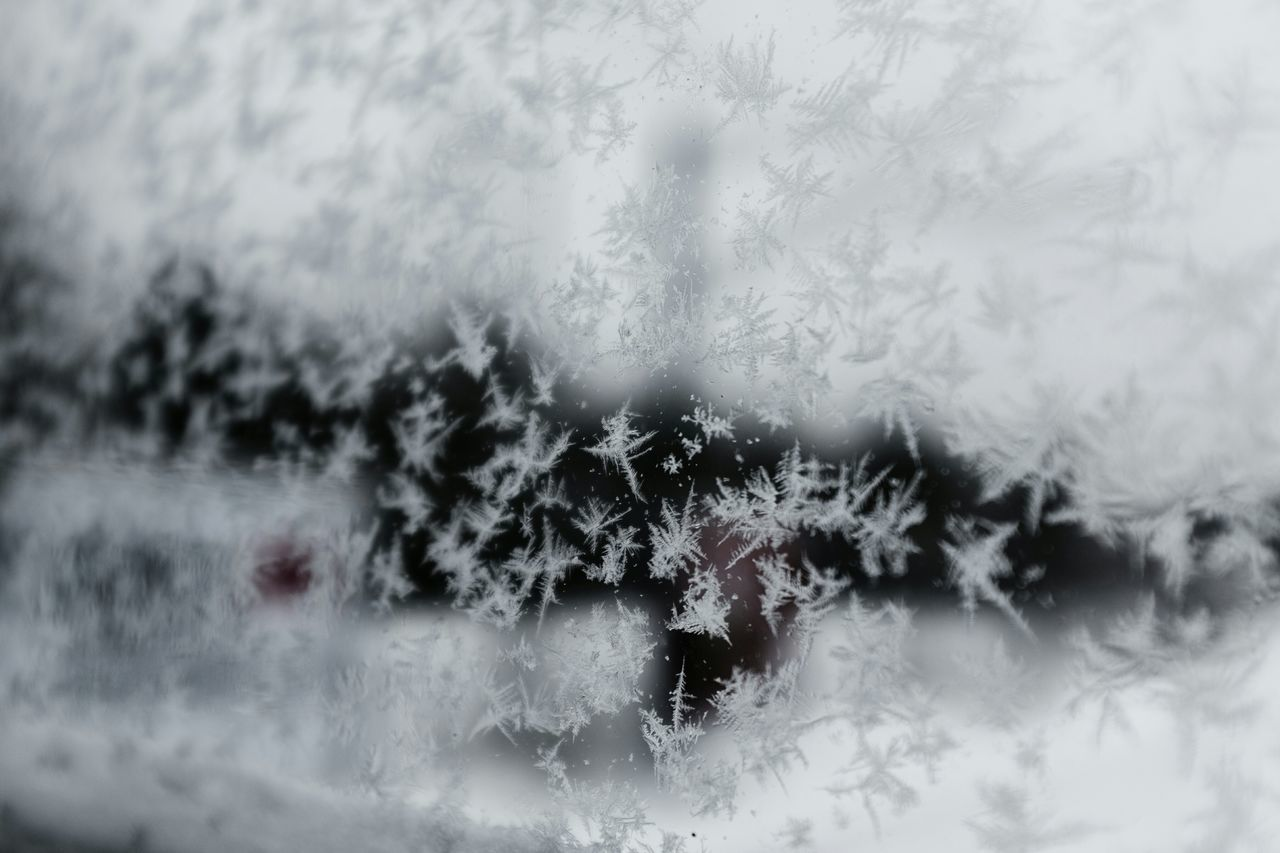 Snow ❄ Frosty
