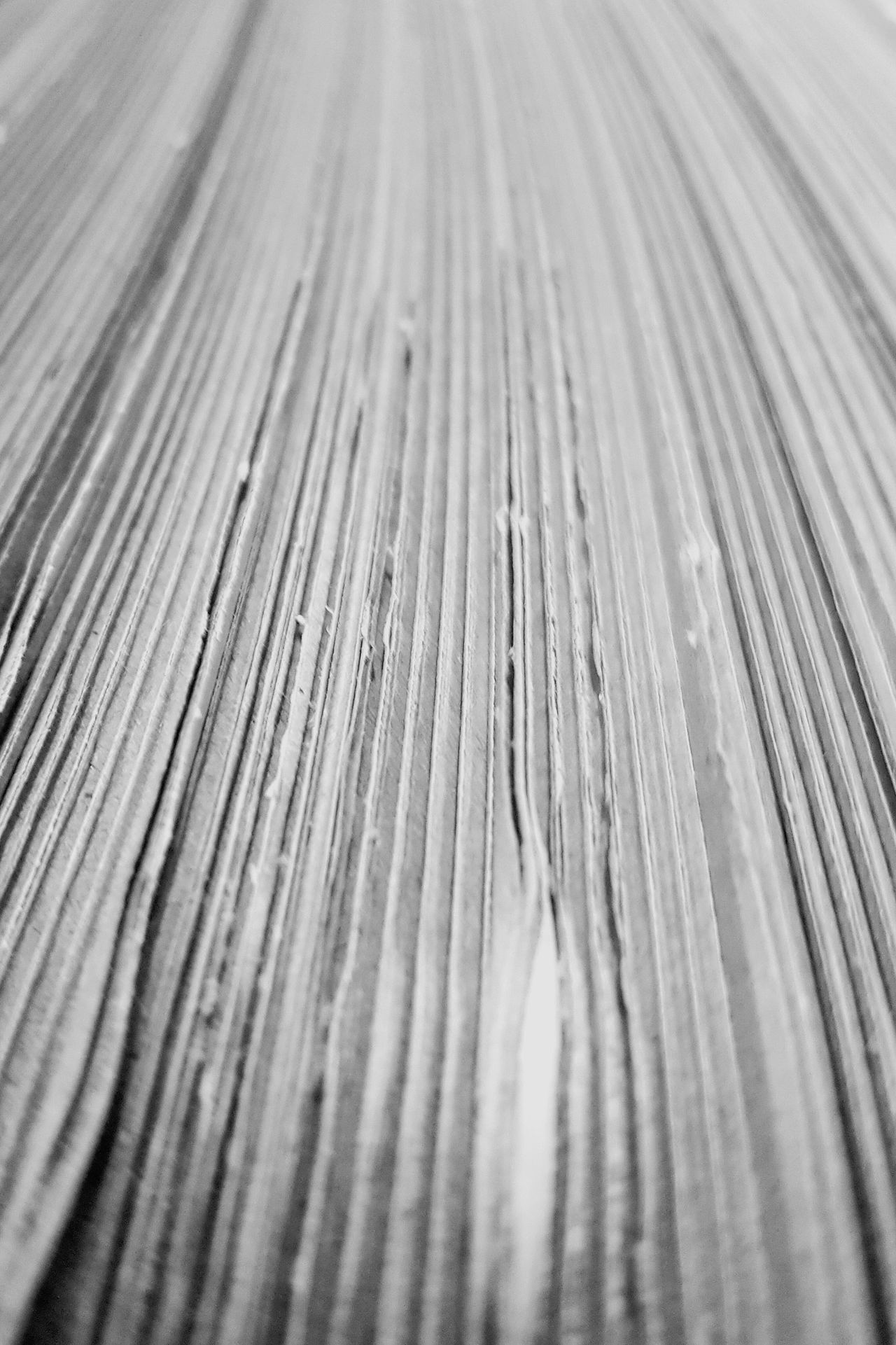 Close-up Extreme Close-up Selective Focus Diminishing Perspective Cardboard Paper Blackandwhite Black & White Black&white Black And White Abstractions Fine Art Abstract Photography Detail Still Life Photography Still Life Lines