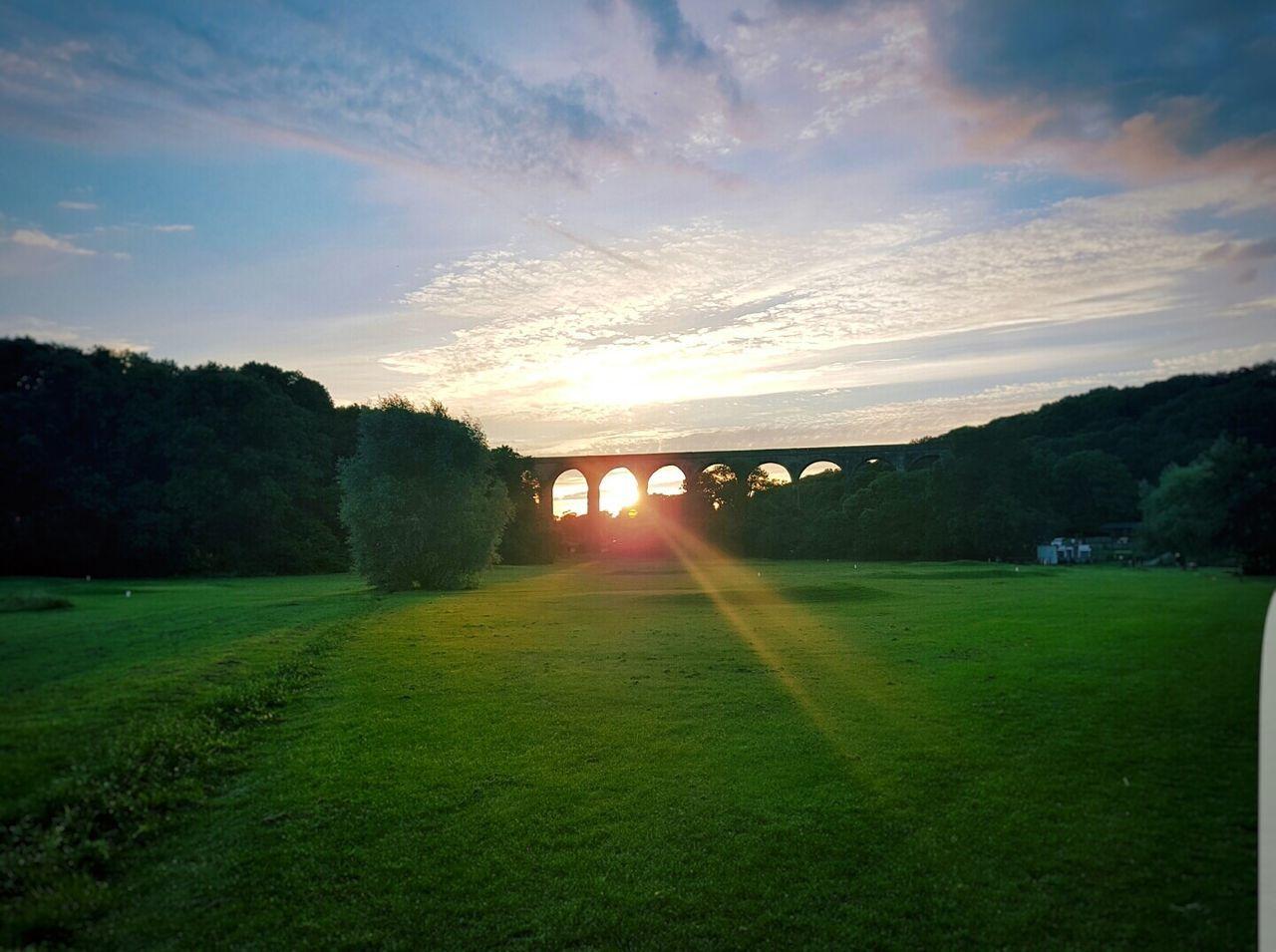 Porthkerry viaduct Nature Sun Grass Outdoors